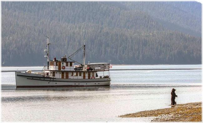 The historic MV Catalyst (Courtesy Expedition)